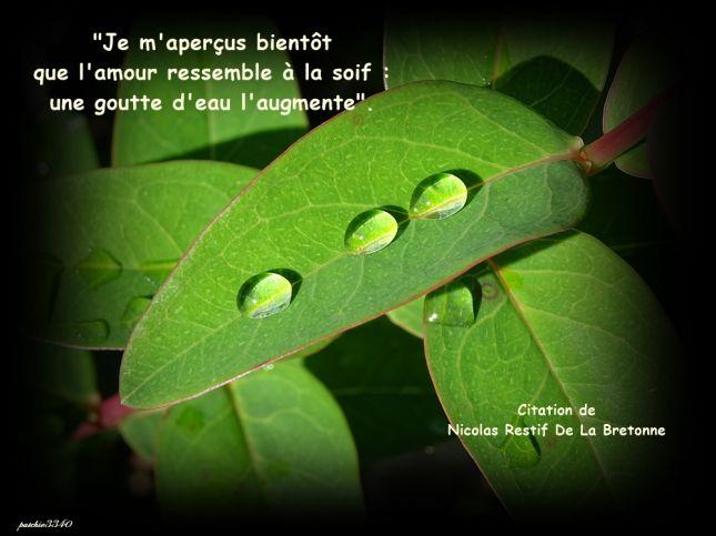 Citation Sur Les Gouttes D Eau